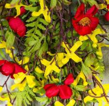 FORSYTHIA  AND FLOWER DROP, 29 IN., RED, YELLOW