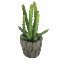 SUCCULENT IN A ROUND WOOD SHAPE CERAMIC  POT, 2-1/2 DIA X 8